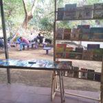 reading_in_park