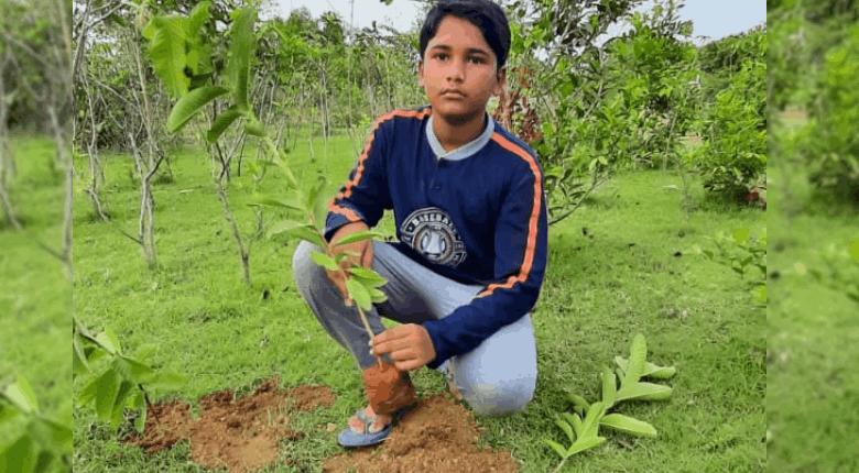 Naren Villuri Seed Collector