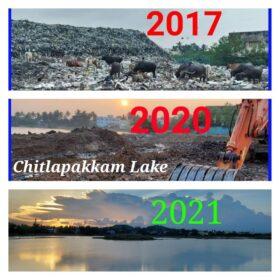 Chitlapakkam lake transformation
