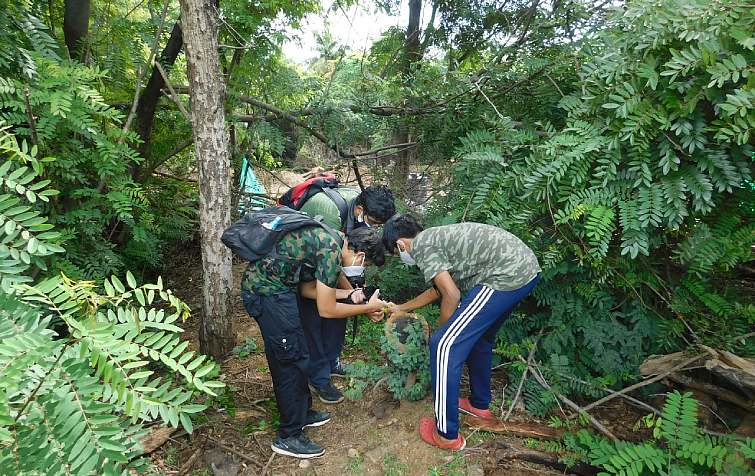 Young Naturalists observing nature